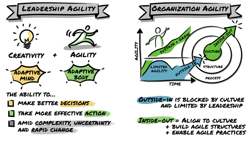 leadership-organisation-agility